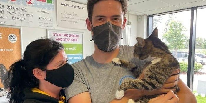 Hombre rencontrándose con su gato; Gatito se reencuentra con su familia 10 años después de extraviarse