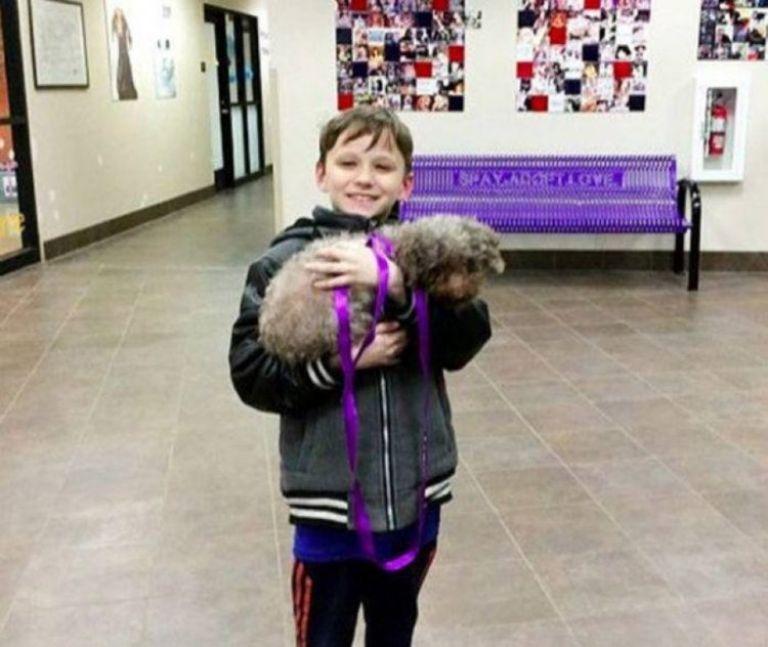 Niño cargando a un perro; niño visita refugio y adopta al perrito más viejo