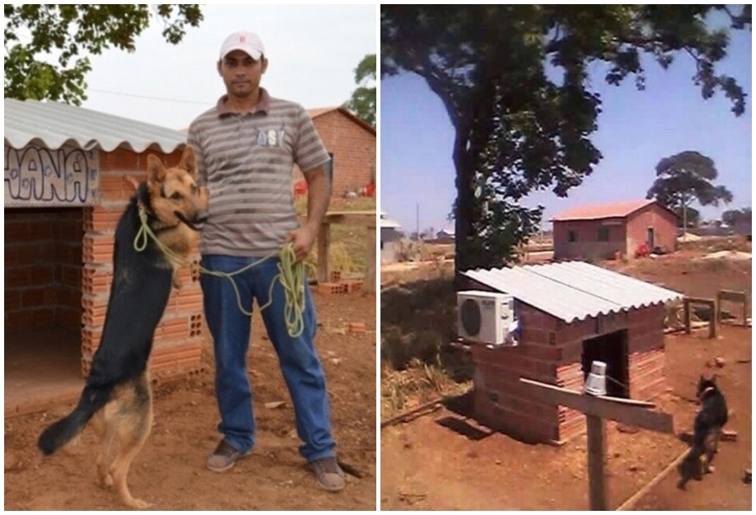 Hombre junto a su perro; dueño coloca aire acondicionado en la casa de su perro